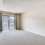 Bridget_Fitzpatrick_CJV_Real_Estate6
